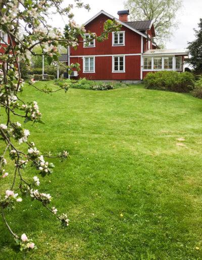 The large child friendly garden