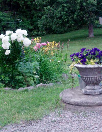 Flowers in the relaxing garden