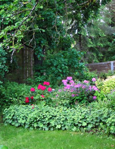 The garden has beautiful flowers