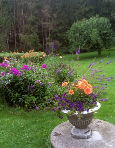 The garden with flowerbeds